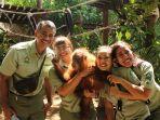 bali-safari-marine-park-sebelum-melepaskan-kembali-orangutan-yang-disita-ke-alam-liar.jpg