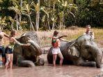 bali-zoo-dan-the-sanctoo-villas-spa.jpg