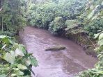batu-perahu-di-tengah-tengah-sungai-ayung-sebelum-jembatan-balitex-di-denpasar.jpg