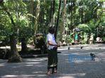 begini-situasi-monyet-di-monkey-forest-ubud-ditengah-pandemi-corona.jpg