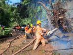 bpbd-gianyar-mengevakuasi-pohon-tumbang-yang-menutup-akses-jalan.jpg