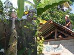 bpbd-karangasem-sedang-mengevakuasi-pohon-kelapa.jpg