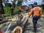 bpbd-klungkung-saat-melakukan-mitigasi-bencana-pohon-tumbang.jpg