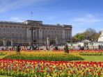 buckingham-palace_20170330_115448.jpg