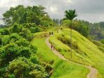 campuhan-ridge-walk-ubud-bali_20180908_132500.jpg