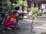 dewi-ular.jpg