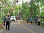 dinas-lingkungan-hidup-bersama-bpbd-kepolisian-dan-petugas-pln-memangkas-dahan-pohon-perindang.jpg