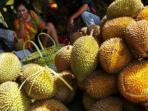 durian_20160217_142653.jpg