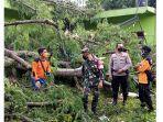 evakuasi-pohon-tumbang-timpa-sekolah-dan-rumah.jpg