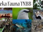 fauna-tnbb_20170115_114513.jpg