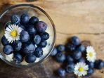 foto-ilustrasi-buah-berry.jpg