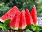 ilustrasi-buah-semangka.jpg