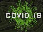 ilustrasi-covid-19-kasus-sembuh.jpg