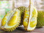 ilustrasi-durian-legit-dan-matang.jpg
