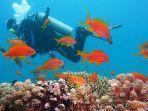 ilustrasi-menyelam-diving.jpg
