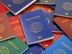 ilustrasi-pasport-warna-warni.jpg