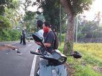 kecelakaan-maut-di-jalan-raya-jurusan-denpasar-gilimanuk.jpg