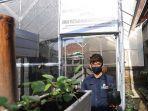 kepala-dinas-pertanian-buleleng-i-made-sumiarta-menunjukan-bibit-sayuran.jpg