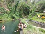 kolam-suganing-terletak-di-jalan-serokadan-wilayah-abuan-susut-bangli-bali.jpg