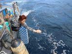 menteri-kelautan-dan-perikanan-ri-susi-pudjiastuti-melepasliarkan-173800-ekor-bibit-lobster.jpg