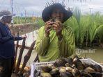 nyoman-roni-menunjukkan-hasil-kerang-yang-dicarinya-di-hutan-mangrove-desa-budeng.jpg