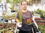 owner-tavor-bali-steven-limantoro-tengah-berfoto-dengan-membawa-tanaman-jenis-sarracenia.jpg