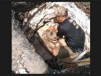 pekerja-teknis-saat-memperbaiki-valve-yang-desa-sading-kecamatan-mengwi.jpg