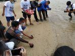 pelepasan-tukit-di-pantai-sanur-denpasar-tepatnya-di-belakang-griya-satrian-resort.jpg