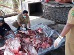 pemeriksaan-pos-mortem-pada-daging-babi-oleh-petugas-keswan-kesmavet-senin-12-april-2021.jpg