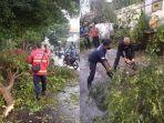 penanganan-pohon-tumbang-oleh-petugas-bpbd-denpasar.jpg