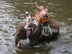 pengunjung-sedang-asyik-naik-gajah-di-bali-zoo-gianyar-jumat-572019.jpg