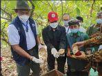 peninjauan-kebun-kakao-organik-dan-memanen-komoditas-kakao-di-desa-angkah-selemadeg-barat.jpg