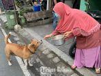 penjual-gorengan-beri-makanan-anjing-viral.jpg