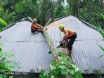 petugas-bpbd-bersama-warga-sekitar-mengevakuasi-pohon-kelapa-yang-menimpa-rumah-warga.jpg