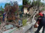 petugas-bpbd-denpasar-mengevakuasi-pohon-tumbang.jpg