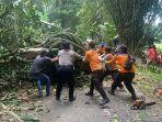 petugas-bpbd-mengevakuasi-pohon-tumbang-yang-menimpa-kabel-listrik-dan-menutup-badan-jalan.jpg