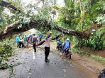 petugas-dinas-pu-provinsi-ketika-melakukan-evakuasi-material-pohon-tumbang.jpg