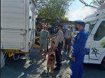 petugas-kepolisian-pelabuhan-padang-bai-bersama-polair-polres-karangasem-mengerahkan-anjing.jpg