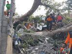 petugas-membersihkan-pohon-kepuh-yangtumbang-menimpa-lima-rumah-di-jalan-gumitir.jpg