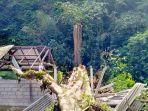 pohon-pole-tumbang-menimpa-bangunan-pura-subak.jpg