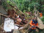 pohon-santen-tumbang-menimpa-rumah-milik-seorang-warga-di-klungkung.jpg