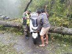 pohon-tumbang-di-jalur-desa-sukawana-menuju-desa-pinggan-minggu-282.jpg
