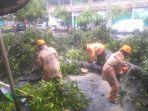 pohon-tumbang-dipotong-oleh-petugas-bpbd-jembrana-sabtu-27-februari-2021.jpg