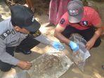 polisi-mengecek-tulang-belulang-yang-ditemukan-di-pekarangan-rumah-warga-di-banjar-sangluh.jpg