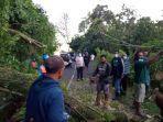 polri-tni-serta-masyarakat-setempat-saat-melakukan-evakuasi-pohon-tumbang.jpg