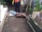pria-asal-lombok-ntb-yakni-marzuki-50-ditemukan-meninggal-dunia-di-halaman-rumah.jpg