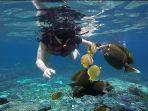 rekomendasi-3-spot-diving-di-bali-surganya-para-penyelam.jpg