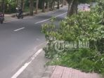 sampah-dedaunan-di-trotoar-di-gianyar_20180306_202802.jpg