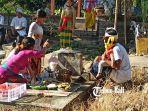 sejumlah-krama-desa-adat-buleleng-saat-melaksanakan-tradisi-memunjung.jpg