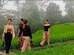 suasana-fashion-show-oleh-model-fashion-di-sawah-yakni-di-areal-dtw-jatiluwih-kecamatan.jpg